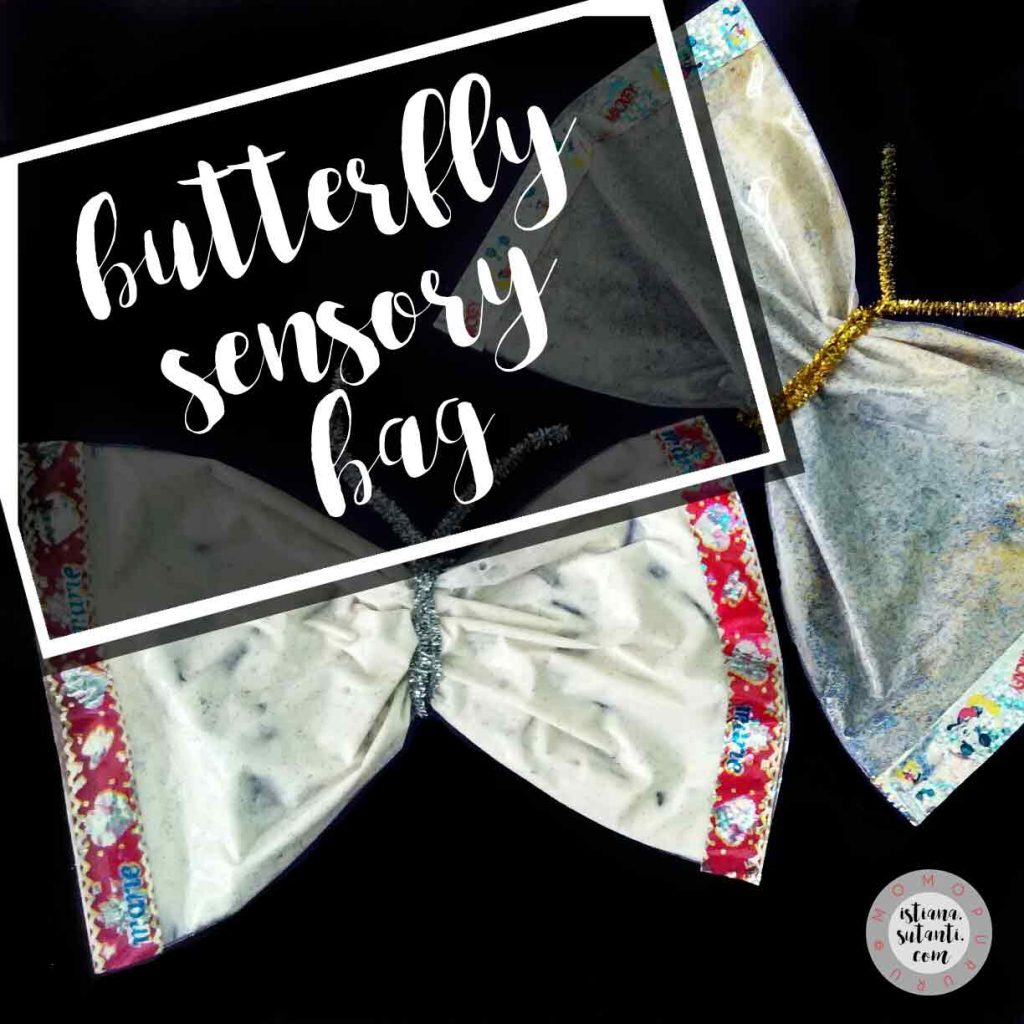 butterflysensorybag
